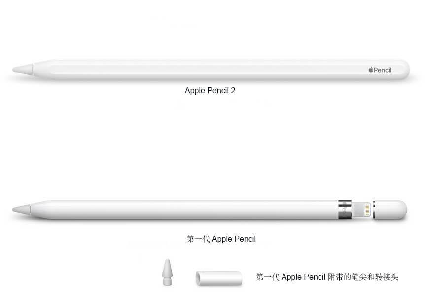 Apple Pencil 1代和2代对比图