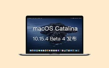 macOS Catania 10.15.4 Beta 4 logo